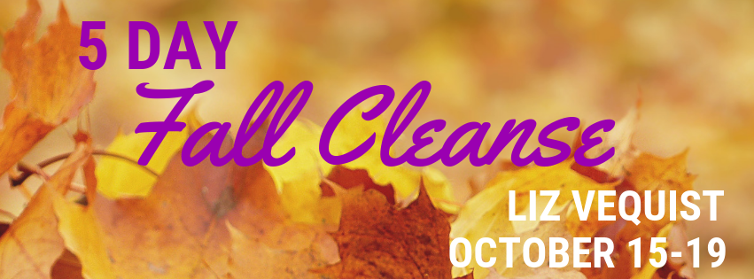 Fall Cleanse Banner